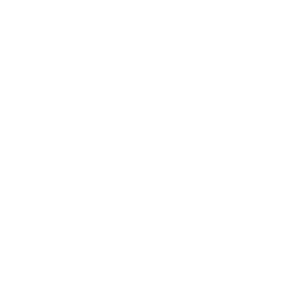 Vintage Investment Services